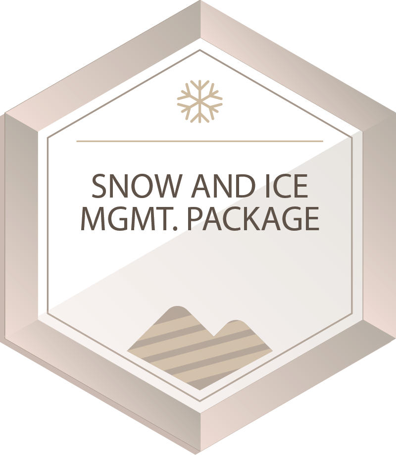 SNOW & ICE PACKAGE